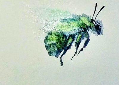 botanical artist stephey bumblebee