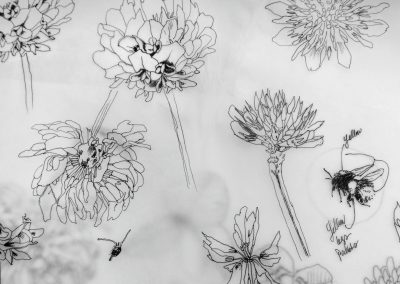 bumble bee botanical sketchbook