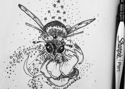 bumble bee sketch by stephey baker