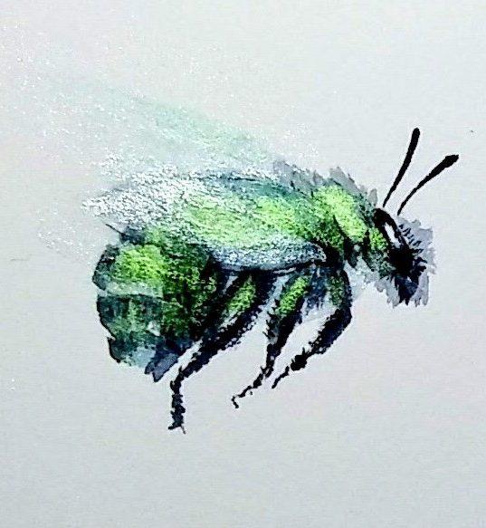 bumblebee animal spirit green